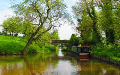 Top 10 Reasons for Living in Cheshire